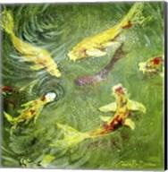 Koi Fish Pond Fine-Art Print