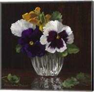 Four Pansies Fine-Art Print