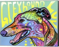 Greyhound Luv Fine-Art Print