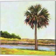 Marsh Palm Fine-Art Print