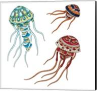 Jelleyfish Family Fine-Art Print