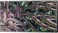 Deep Sea 1 Fine-Art Print