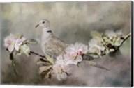 Eurasian Dove In The Garden Fine-Art Print