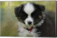 Puppyhood 3 Fine-Art Print