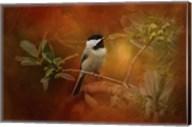 Autumn Day Chickadee Fine-Art Print