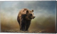 Grizzly On The Rocks Fine-Art Print