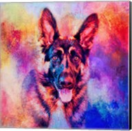 Jazzy German Shepherd Fine-Art Print