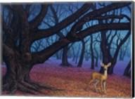 Wanderer Fine-Art Print