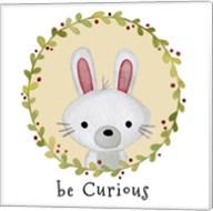 Be Curious Rabbit Fine-Art Print