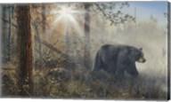 Shadow In The Mist Fine-Art Print