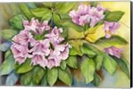 Pink Sunlit Azalea Fine-Art Print