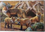 Front Porch Fox Family Fine-Art Print