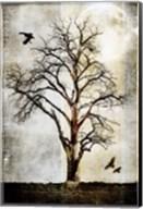 Cottonwood Tree Part 2 Fine-Art Print