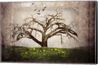 Cottonwood Tree Part 3 Fine-Art Print