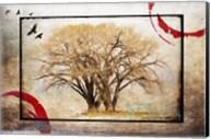 Cottonwood Tree Part 6 Fine-Art Print