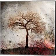 Cottonwood Tree Part 9 Fine-Art Print