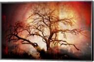 Cottonwood Tree Part 10 Fine-Art Print
