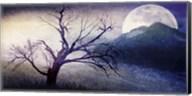Cottonwood Tree Part 11 Fine-Art Print