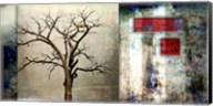 Cottonwood Tree Part 12 Fine-Art Print