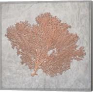 Decorative Sea Leaf 3 Fine-Art Print