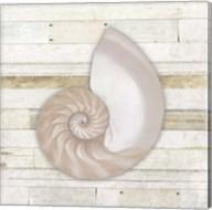 Gypsy Sea Coastal 3 Fine-Art Print