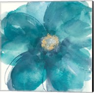 Bloom Beauty II Fine-Art Print