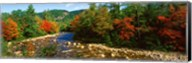 River flowing through a Forest, Swift River, White Mountain National Forest, New Hampshire Fine-Art Print