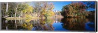 Reflection of Trees in a lake, Biltmore Estate, Asheville, North Carolina Fine-Art Print