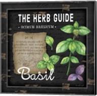Herb Guide Basil Fine-Art Print
