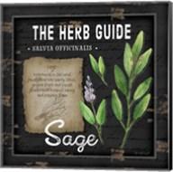 Herb Guide Sage Fine-Art Print
