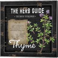 Herb Guide Thyme Fine-Art Print