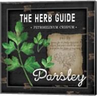 Herb Guide Parsley Fine-Art Print