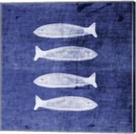 Indigo Fish III Fine-Art Print
