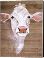White Cow Fine-Art Print
