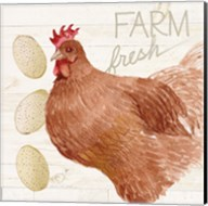 Life on the Farm Chicken II Fine-Art Print