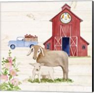 Life on the Farm IV Fine-Art Print