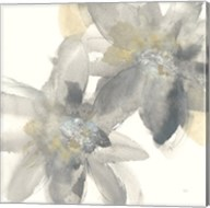 Gray and Silver Flowers II Fine-Art Print