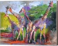 Giraffed Fine-Art Print