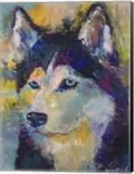 Husky Fine-Art Print