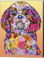 Flowers Shih Tzu Fine-Art Print