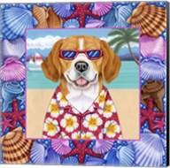 Seashells Beagle Fine-Art Print