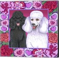 Valentine Poodles Fine-Art Print