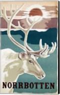 Norbotten Fine-Art Print