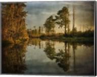 Swamp Land 1 Fine-Art Print