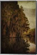 Swamp Land 2 Fine-Art Print