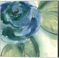 Wannabe Poppies V Fine-Art Print