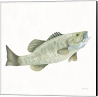 Gone Fishin Small Mouth Fine-Art Print