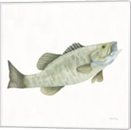 Gone Fishin Small Mouth Fine-Art Print
