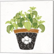 Fine Herbs VIII Fine-Art Print