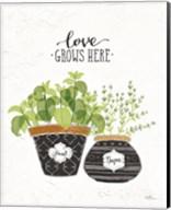 Fine Herbs V Fine-Art Print